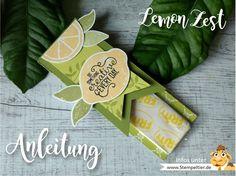 stampin up anleitung verpackung video lemon zest zitronen stanze fritt mitbringsel goodie how to limette papierschneider maße stempeltier