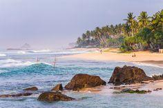 sri lanka tropical - Google Search Sri Lanka, Tropical, Google Search, Water, Outdoor, Gripe Water, Outdoors, Outdoor Games, Aqua