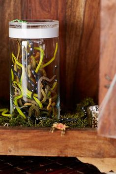 Make all the creepy-crawlies and cobwebs a little more creative this year with a few DIY steps!