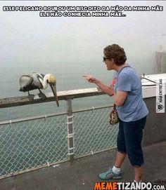 Kkkk a louca dá bronca até no pelicano kkkkk