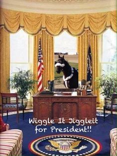 WiggleIt JiggleIt for President Office Workspace, Office Decor, Baroque Decor, Oval Office, Baroque Fashion, High Quality Images, Modern Architecture, Valance Curtains, Interior Decorating