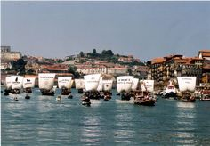Rebelo Boat race on the Douro river, Porto, Portugal