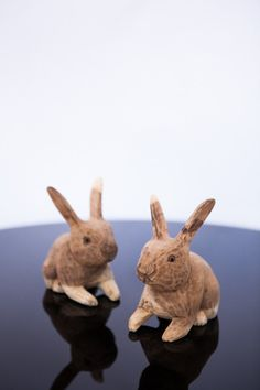 BOPPING BUNNY - $20 These sweet little wooden bunnies are hand carved. There is a true beauty in the raw, natural materials used on these pieces. True Beauty, Natural Materials, Bunnies, Hand Carved, Im Not Perfect, Objects, Carving, Sweet, Fun