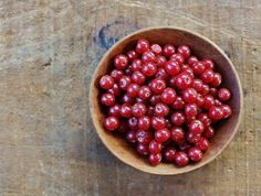 Where to find and how to identify autumn olive, Elaeagnus umbellata, the health benefits of its delicious edible berries, and how to harvest and use them.