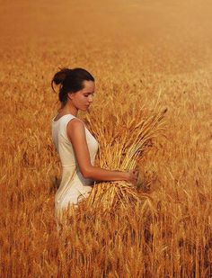 Photographer Давид Д (David Dubnitskiy) - ไม่ได้ตั้งชื่อ Mother Of Persephone, Wallpaper Paisajes, David Dubnitskiy, Raindrops And Roses, Fields Of Gold, Wheat Fields, Field Of Dreams, Felder, Caramel Color