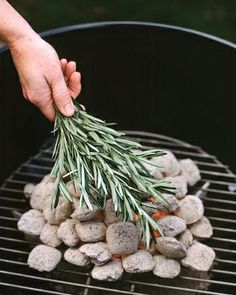 Rosemary Coals - instead of making a marinade with rosemary for grilling, place the herb right on the coals. The smoke enhances food in the same way burning wood chips does