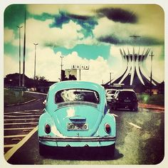 I saw an old VW Bug with overgrown vines last week....what a vintage care.  Someday perhaps a VW convertible...