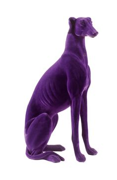 I love this dog and.it is purple, my favorite color.