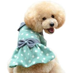 One Tail Four Paws Little Polka Dot Pet Dress, Large, Apple Green * Check out this great product. (This is an affiliate link) #ApparelAccessories