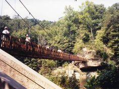 Turkey Run State Park foot bridge