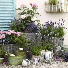 Actueel - Wat te doen in de tuin in juli? - https://www.tuincentrumoverzicht.nl/actueel/5399/wat-te-doen-in-de-tuin-in-juliy