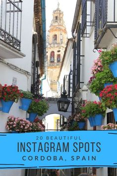 Incredible Instagram Spots in Cordoba, Spain! Cordoba is a beautiful city in Andalusia with many wonderful photography spots from the Roman Bridge, to Flower Alley and many more lesser known instagrammable spots. This is the ultimate guide to visiting Cordoba with a camera! #cordoba #instagrammable #spain via @MyTravelScrapbook Europe Travel Tips, Spain Travel, Portugal Travel, Travel Abroad, Budget Travel, Visit Colombia, South Of Spain, Argentina Travel, European Destination