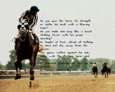 Secretariat~ An amazing racehorse and incredible Triple Crown Winner All The Pretty Horses, Beautiful Horses, Horse Love, Horse Girl, Inspirational Horse Quotes, Equestrian Quotes, Equestrian Style, Racing Quotes, Triple Crown Winners