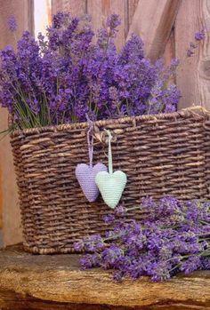 Brown and Purple Lavender / Basket Lavender Cottage, Lavender Blue, Lavender Fields, Lavender Flowers, Purple Flowers, Beautiful Flowers, Beautiful Hearts, Beautiful Things, Purple Love