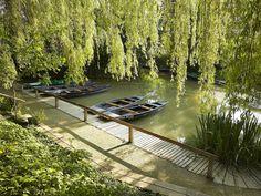 Verdure dans le Marais Poitevin en #Vendée © A.Lamoureux-Vendée-Expansion-Maillezais
