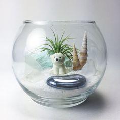 The Snow Globe Series: Polar Bear Terrarium Kit by TerrariumKits Plastic Terrarium, Terrarium Bowls, Terrarium Plants, Succulent Terrarium, Tiny Garden Ideas, Mini Mundo, Tulips In Vase, Mini Fairy Garden, House Plants Decor