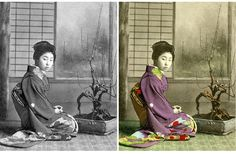 Bonsai Photos: from Black & White to Colorized and Back   Bonsai Bark