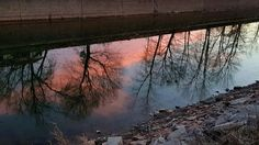 No this image is not upside down. It is a reflection of the sunset in the trees last evening along the Erie Canal in Brockport, NY.  The canal is still way down for the Winter with maybe only 2-3 feet of water in it.   #Sunset #Water #Trees #ErieCanal #Brockport #Reflections