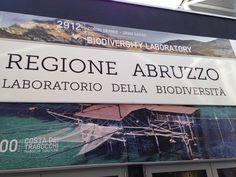 All'Expo l'Abruzzo porta anche la solidarietà - L'Abruzzo è servito   Quotidiano di ricette e notizie d'AbruzzoL'Abruzzo è servito   Quotidiano di ricette e notizie d'Abruzzo