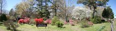 Oaklawn Garden-Germantown, TN- drove by hundreds of times, but never stopped to visit