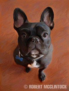 """Brodie"" - French Bulldog  - Robert McClintock"