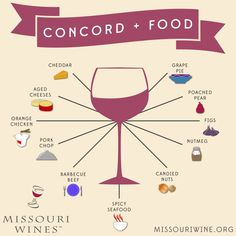 Concord Wine and Food Pairings | MO Wine Wine Cheese Pairing, Cheese Pairings, Wine Pairings, Food Pairing, Trio Of Desserts, Grape Pie, Table Etiquette, Wine Images, Marmalade