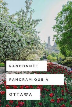 Vous planifiez un séjour dans la région d'Ottawa bientôt? On vous propose une randonnée panoramique qui vous fera découvrir des vues à couper le souffle!! Sortez donc vos caméras!! :)