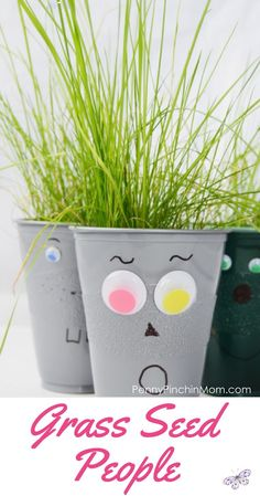 Grass Seed People | A great craft for warm weather! Fun craft idea for kids for camp or spring time lesson plans - grass seed people!    Kids summertime crafts | preschool kids crafts | easy kids crafts | kids crafts for camp | cheap kids crafts via @PennyPinchinMom<br> Celebrate the warm temperatures and the coming of spring by making these fun grass seed people! They are easy to make, and are fun for all ages! Craft Activities, Preschool Crafts, Kids Crafts, Preschool Ideas, Craft Ideas, Seed Craft, Easy Toddler Crafts, Summer Crafts For Kids, Summer Ideas