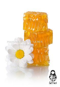 Honeycomb slice Buy this photo: http://www.istockphoto.com/stock-photo-21998076-honeycomb-slice.php?st=ff01df0