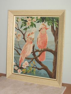 """Vintage Paint By Number Painting Birds Cockatoos 20""""X 24"""" Framed NICE ... $60.00"""