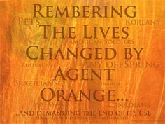 While Many Die Waiting for Treatment, Many Also Die Fighting for Agent Orange Compensation