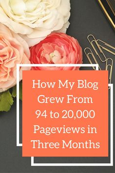 Here are all of the techniques I used to grow my blog in it's first three months. I list all of the tools and techniques I used to grow my pageviews. Click through to read.