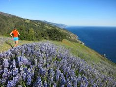 List of Big Sur Hikes from Leor Pantilat's Adventure Blog Big Sur Waterfall, Waterfall Project, Los Padres National Forest, Southern California, Wilderness, State Parks, Backpacking, Hiking, Adventure