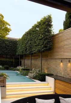 Evergreen Pleached Trees for Outdoor Landscaping 21 Fascinating Evergreen Pleached Trees for Outdoor Landscaping Evergreen Pleached Trees for Outdoor Landscaping 21 Garden Privacy, Backyard Privacy, Backyard Fences, Outdoor Landscaping, Landscaping Ideas, Privacy Wall Outdoor, Inexpensive Landscaping, Garden Fences, Garden Walls