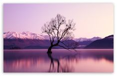"""We decided to put together a bunch of long exposure photography ideas to help you get out of your """"artist's block"""" and out shooting. Long exposure is such . Exposure Photography, Landscape Photography, Photography Ideas, Life Photography, 8k Ultra Hd, Lake Wanaka, Relaxation Meditation, Meditation Videos, Meditation Music"""