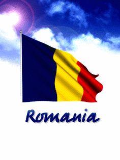tricolorul romaniei imagini animate.gif (240×320) Flag Gif, Visit Romania, Christmas Tree Crafts, Capricorn, Google, Cool Stuff, Romania Bucharest, Gin, Beautiful Places