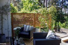 puutarha,piha,istutus,riipparaita,polyrottinki