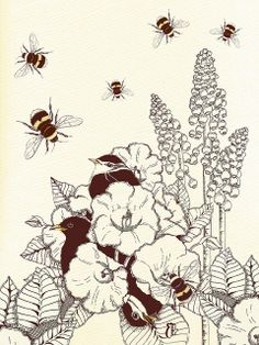 'Honey Trap' by Colleen Parker, via Flickr
