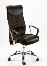 Ice Mesh Back combo chair