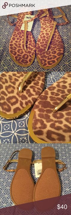 Leopard T-Style Sandals 🔸BRAND NEW, NEVER WORN 🔸T-Style Leopard Sandals wth Golden Hardware 🔸Easy Buckle Straps 🔸Easy Grip Bottoms 🔸Felt Style Insoles Mossimo Supply Co Shoes Sandals