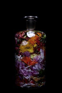 Flower bottles by Makoto Azuma, flower artist & AMKK
