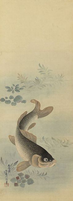 "A swimming Koi fish or carp. Painted with ink and pigments on silk. Signed and sealed. The painting is in reasonable condition with great age and some marks are present. There are some marks, crease and damage on the mounting. It is accompanied by a paulownia wood storage box. Painting: 13 1/2"" x 35 7/8"" (34.0cm x 91.0cm)  Scroll: 17 3/4"" x 68 1/8"" (45.0cm x 173.0cm)"