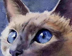 Lilac Traditional Applehead Siamese Cat Art Print by rachelsstudio