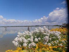 Vista sulla laguna di Cavallino Treporti - Pordelio