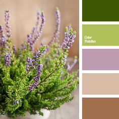 Color Palette #2714