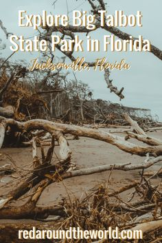 Big Talbot State Park in Jacksonville, Florida is a great park to spend an afternoon. Walk along the beach and go fishing in Big Talbot State Park. Canada Travel, Usa Travel, Travel Tips, Arizona Travel, Florida Travel, Southwest Usa, Ghost Tour, Us Road Trip, Jacksonville Florida