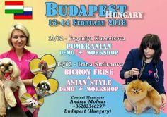 Seminar in Budapest!