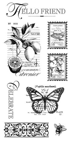 Botanical Tea cling stamp 3 from Graphic 45 Graphic 45, Collages D'images, Etiquette Vintage, Foto Transfer, Card Sentiments, Vintage Labels, Digital Stamps, Vintage Prints, Vintage Images