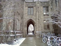 University of Chicago Campus, - Hyde Park, Chicago