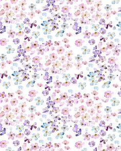 Blanc petit fleur de toute les couleurs